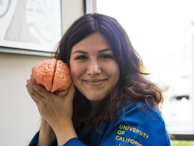 Student with brain model